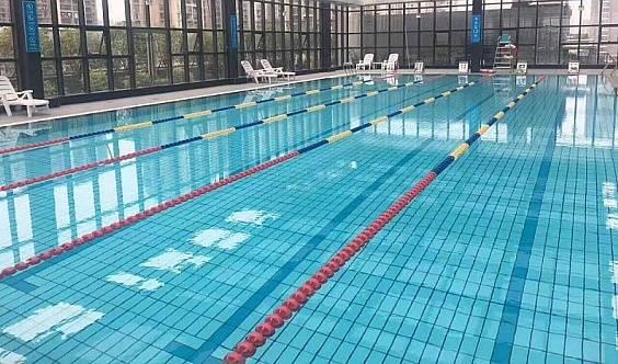《我已报名》博地中心锐动游泳健身创始会员招募