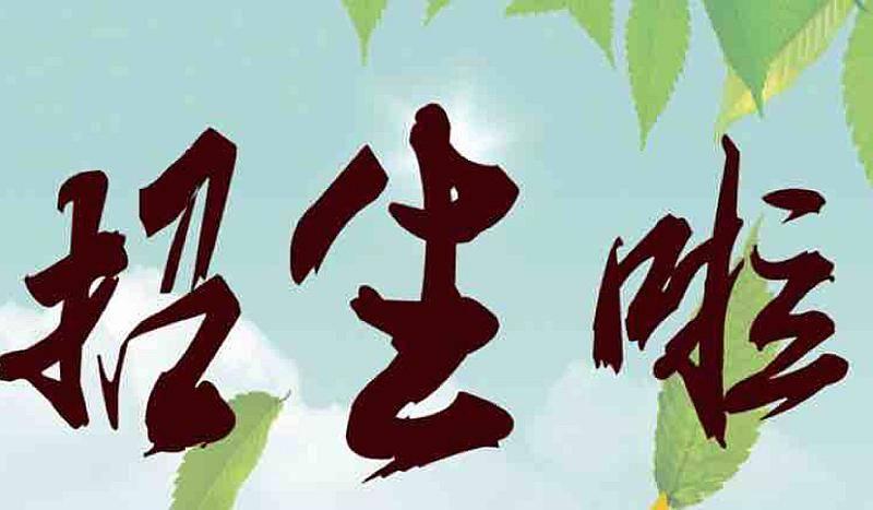 黔西县五大教育机构首届文化艺术节推出398秒 杀72课时精品课程