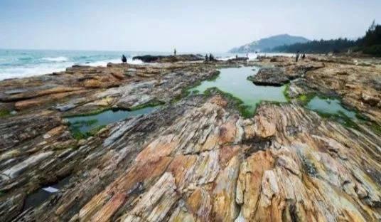 徒步穿越惠州醉美黑排角,行摄原始海岸线,捡贝壳,抓螃蟹