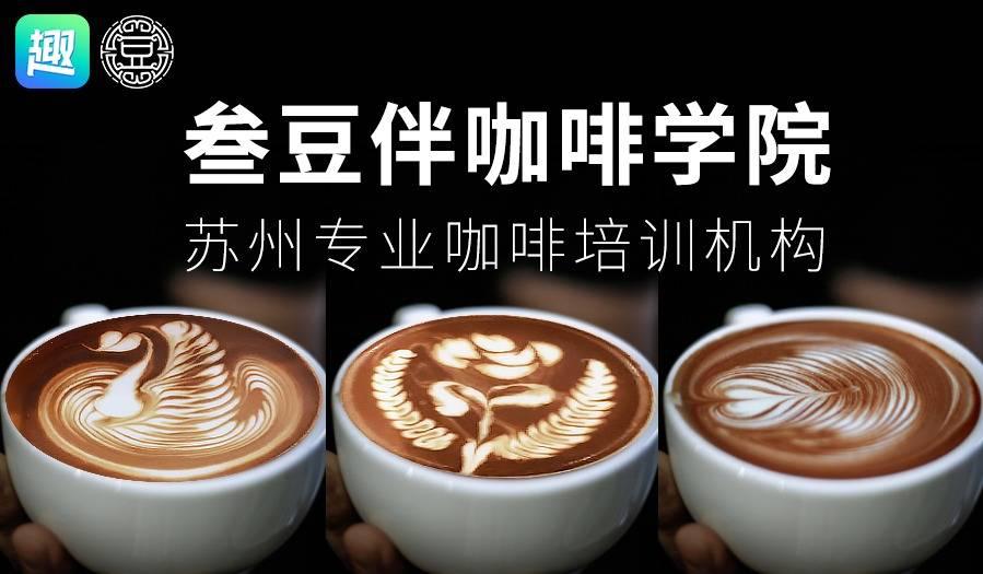 1小时学会咖啡拉花,叁豆伴咖啡学院拉花+手冲体验课