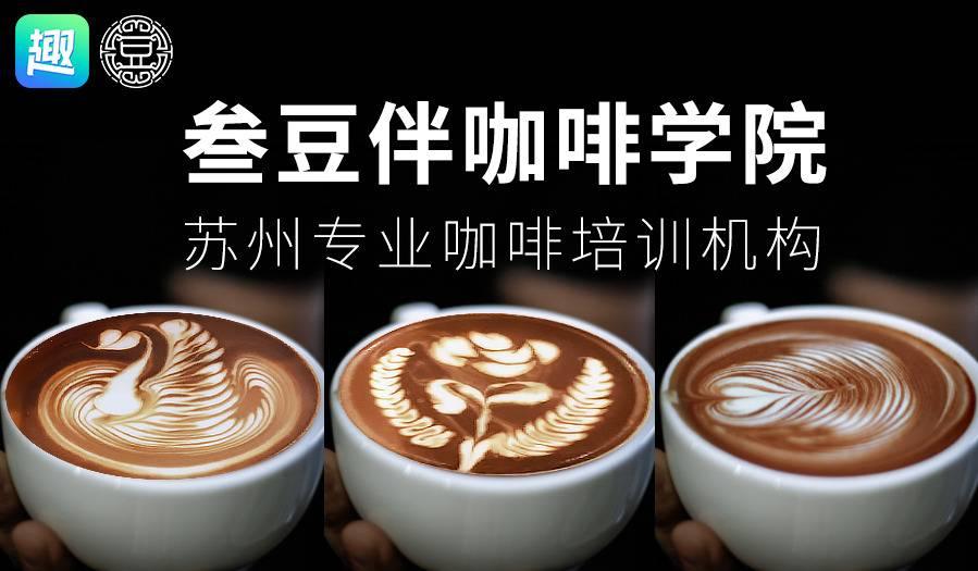1小时学会咖啡拉花,叁豆伴咖啡学院 拉花+手冲体验课