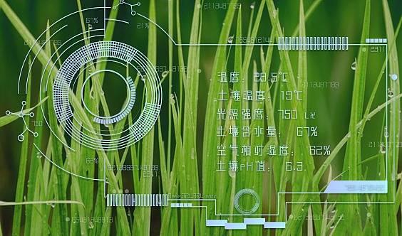 【迈向雄安】北京-雄安现代农业对接会暨2019人工智能+农业物联网高峰论坛