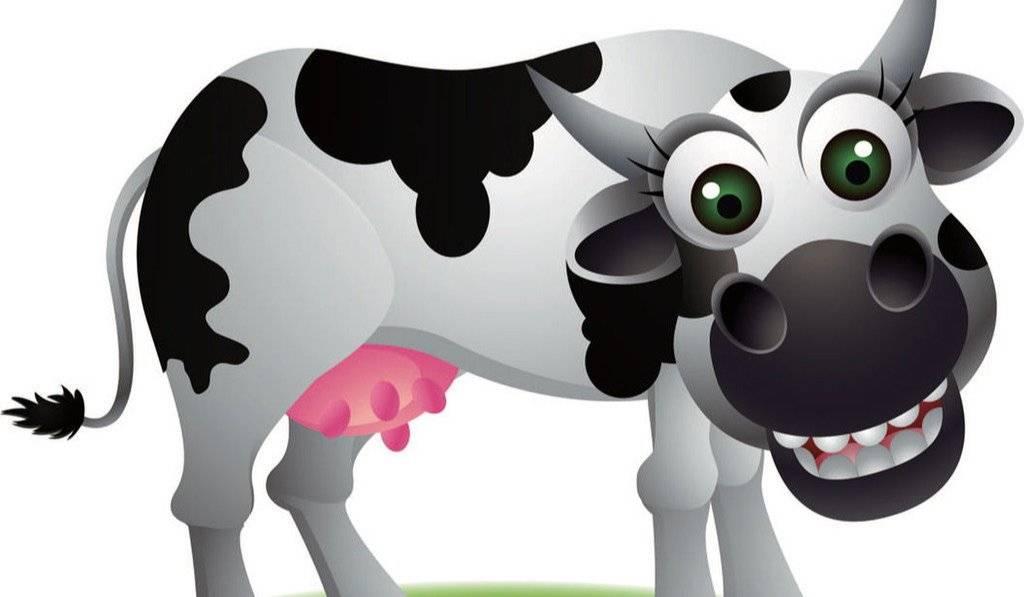 我是奶牛小工人——周末亲子课
